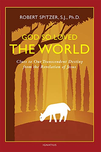 God So Loved the World: Clues to Our Transcendent Destiny from the Revelation of Jesus (Happiness, ...