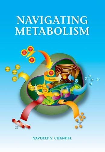 9781621820406: Navigating Metabolism
