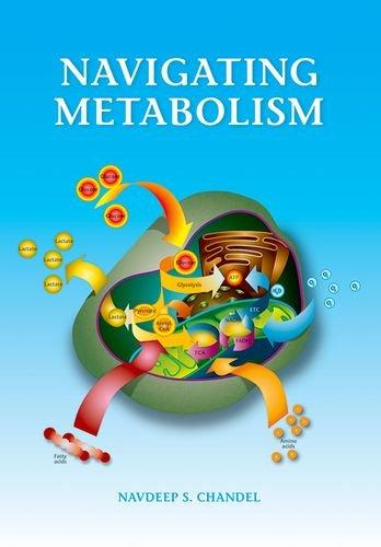 9781621821298: Navigating Metabolism