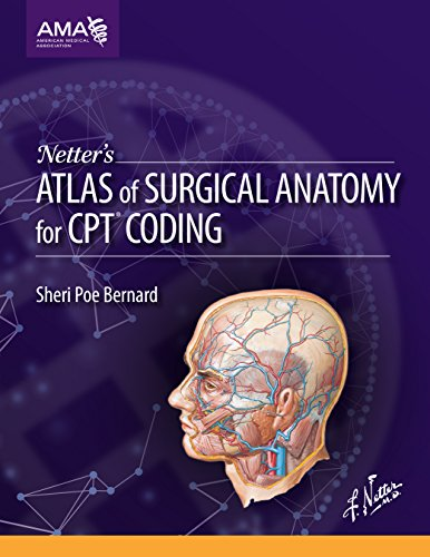 9781622020300: Netter's Atlas of Surgical Anatomy for CPT Coding