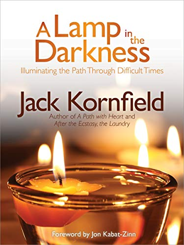 9781622030965: A Lamp in the Darkness: Illuminating the Path Through Difficult Times