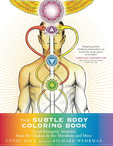 9781622036073: The Subtle Body Coloring Book: Learn Energetic Anatomy--from the Chakras to the Meridians and More