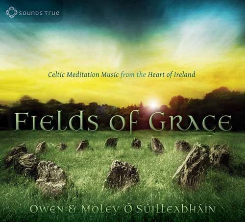 9781622037438: Fields of Grace: Celtic Meditation Music from the Heart of Ireland