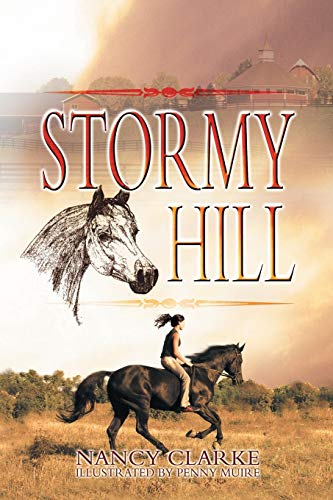 9781622125685: Stormy Hill