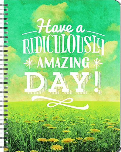9781622268986: Orange Circle Studio 17-Month 2017 Large Flexi Planner, Have a Ridiculously Amazing Day!