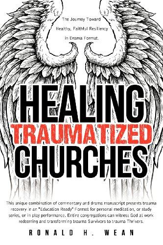 9781622303946: Healing Traumatized Churches