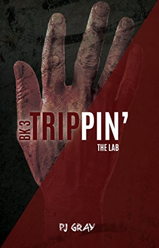 9781622509331: The Lab Book (Trippin')