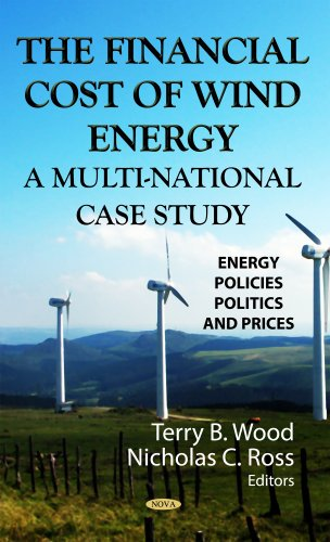 9781622572441: The Financial Cost of Wind Energy: A Multi-National Case Study (Energy Policies, Politics and Prices)