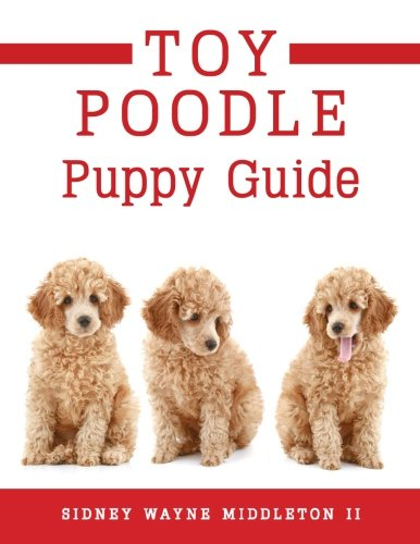 9781622958108: Toy Poodle Puppy Guide