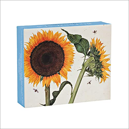 Botanicals QuickNotes: Blank Boxed Notecards