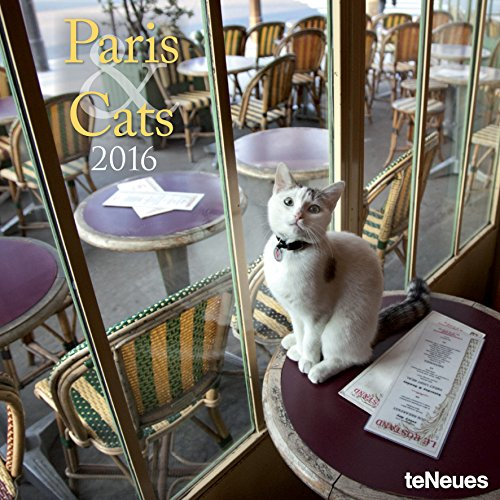 9781623255909: 2016 Paris & Cats Wall Calendar