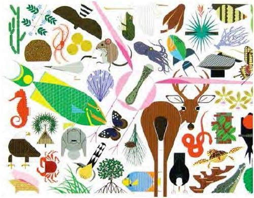 9781623260699: Charley Harper's Animal Kingdom: popular edition