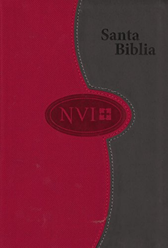 9781623370480: Biblia NVI de letra grande – A dos tonos: Gris/Color ladrillo (Spanish Edition)