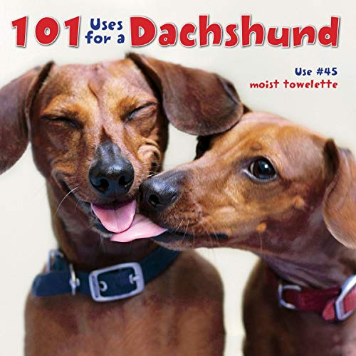 9781623430313: 101 Uses For A Dachshund