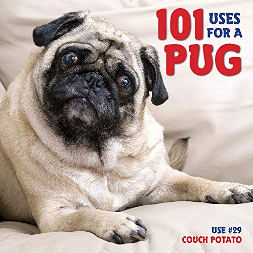 9781623430320: 101 Uses For A Pug