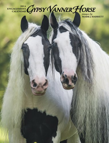 9781623430528: Gypsy Vanner Horse