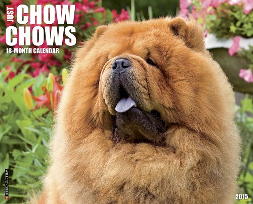 9781623432409: Just Chow Chows 18-Month Calendar