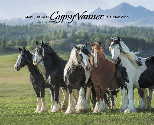 9781623432881: Gypsy Vanner Horse 2015 Calendar