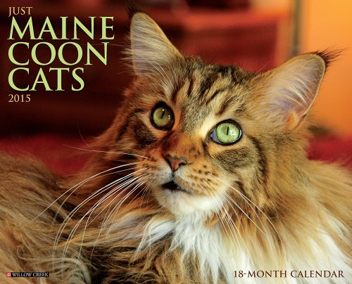 9781623433178: Just Maine Coon Cats 18-Month 2015 Calendar