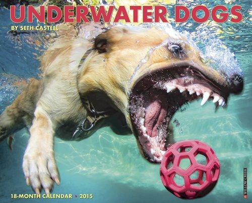 Underwater Dogs 2015 Wall Calendar: Seth Casteel
