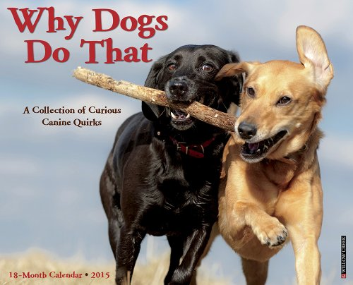 9781623434021: Why Dogs Do That 2015 Wall Calendar