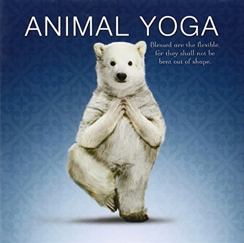 Animal Yoga: Willow Creek Press