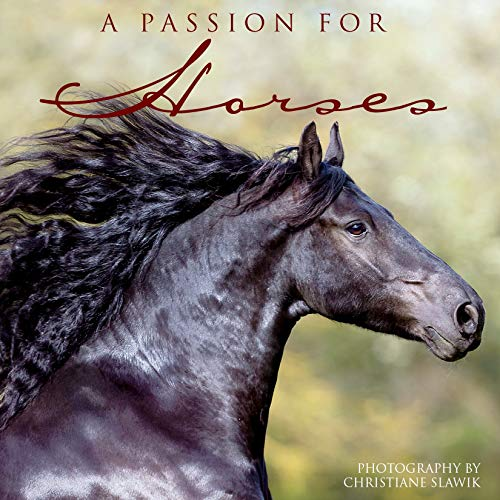 Passion for Horses: Willow Creek Press