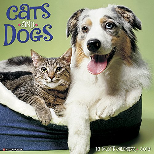 9781623436544: 2016 Cats & Dogs Wall Calendar