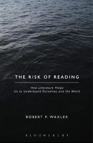 9781623563578: The Risk of Reading: How Literature Helps Us to Understand Ourselves and the World