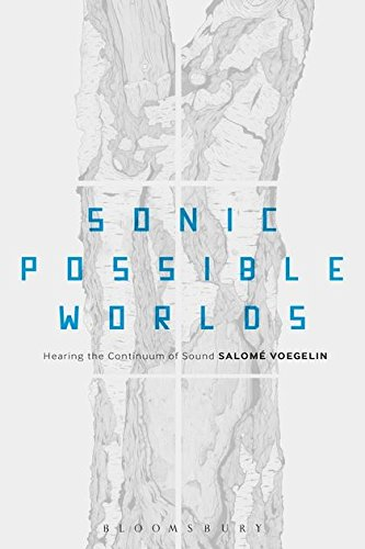 9781623567040: Sonic Possible Worlds