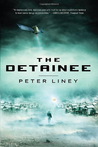 9781623651084: The Detainee