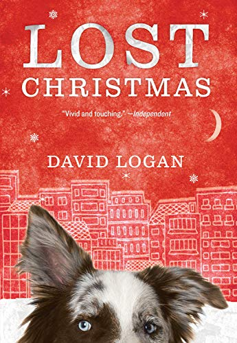 9781623657956: Lost Christmas
