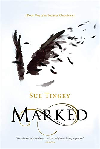 9781623659202: Marked (The Soulseer Chronicles)
