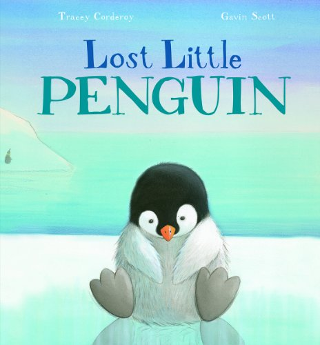 Lost Little Penguin: Corderoy, Tracey