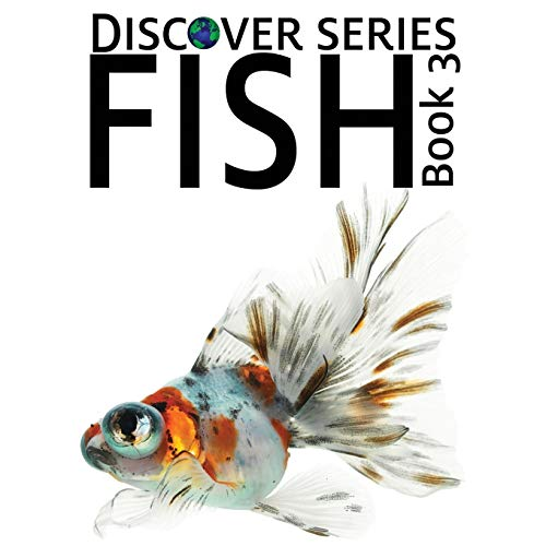 9781623950453: Fish Book 3: Discover Series Picture Book for Children