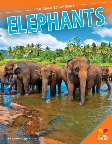 9781624031670: Elephants (Smartest Animals)