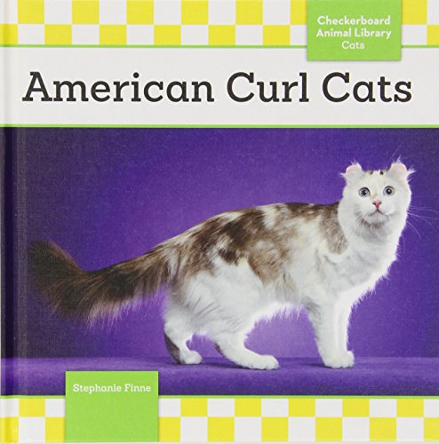 9781624033216: American Curl Cats (Checkerboard Animal Library: Cats)
