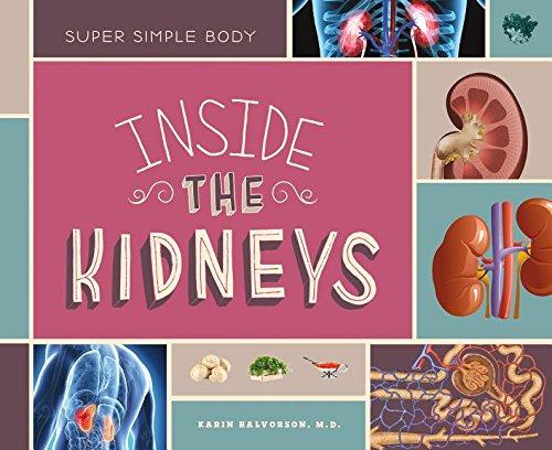 9781624039430: Inside the Kidneys (Super Simple Body)