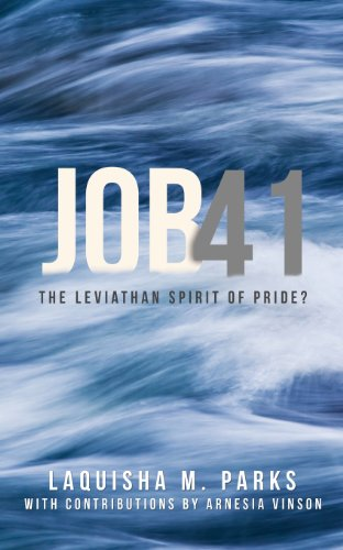 9781624196522: Job 41