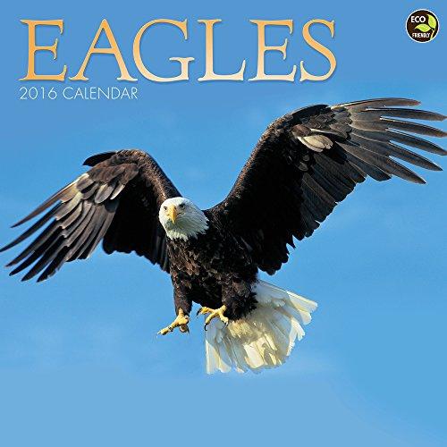 9781624380716: 2016 Eagles Wall Calendar