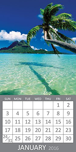 9781624383373: 2016 Tropical Beaches Magnetic Calendar