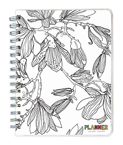 2017 Academic Year COLOR ME Spiral Engagement Planner: TF Publishing