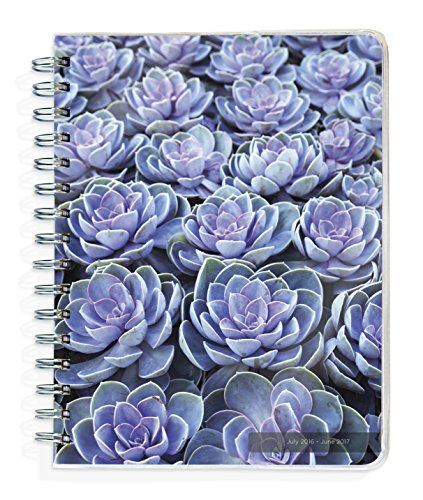 9781624385414: 2017 Academic Year Flowers Spiral Engagement Planner