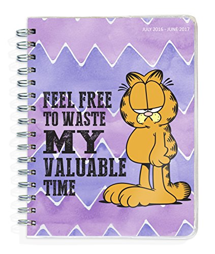 9781624385421: Garfield 2017 Academic Planner