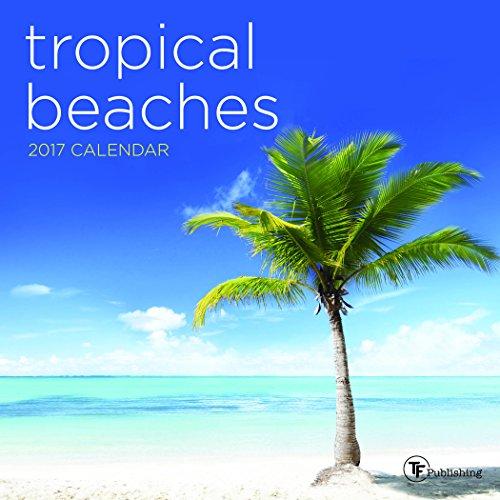 2017 Tropical Beaches Mini Calendar: TF Publishing