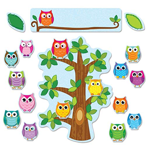 9781624420344: Colorful Owls Behavior Bulletin Board Set