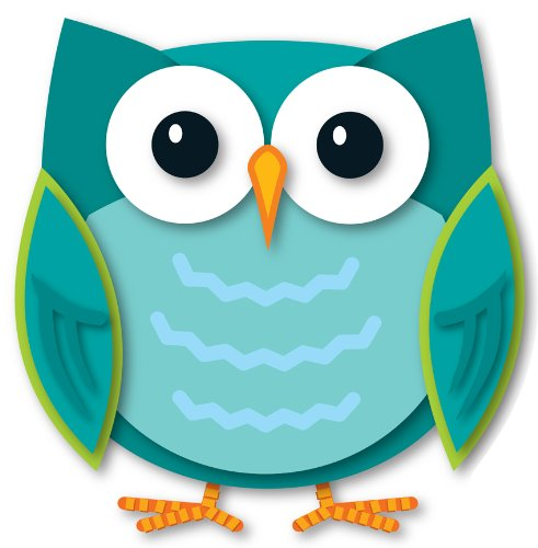 9781624420542: Colorful Owl Two-Sided Decoration