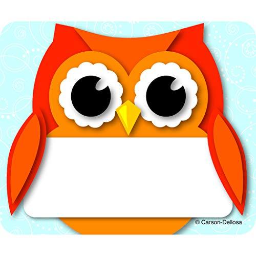Colorful Owl Name Tags