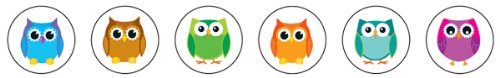 9781624420627: Colorful Owls Chart Seals