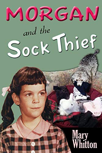 9781624850073: Morgan and the Sock Thief